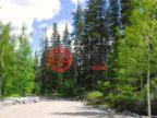 加拿大阿尔伯塔坎莫尔的土地,10 Walker,编号49715276