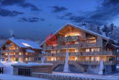 瑞士瓦莱州Nendaz的房产,Route des Ecluses,编号36814509