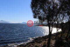澳大利亚塔斯马尼亚的土地,24A Vaughan Court,编号43440753