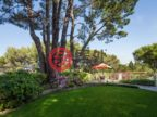 美国加州希尔斯伯勒的房产,320 Robinwood Lane,编号49518485
