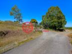 澳大利亚昆士兰Tanah Merah的商业地产,142 Murrays Rd.,编号50636208