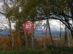 日本北海道的房产,编号45499173
