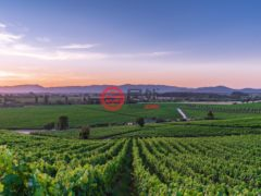 居外网在售智利Santa Cruz总占地7787700平方米的商业地产