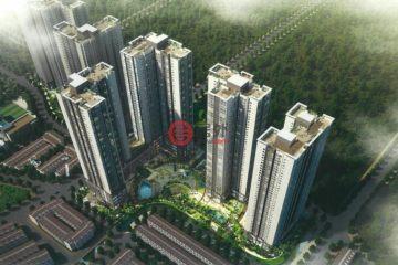居外网在售越南1卧1卫的房产总占地24700平方米USD 170,000